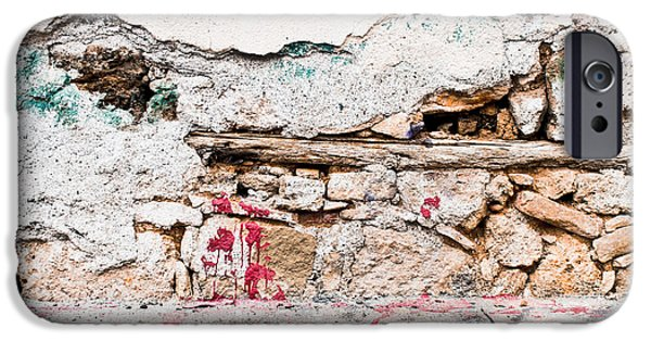 Vandalism iPhone Cases - Damaged wall iPhone Case by Tom Gowanlock