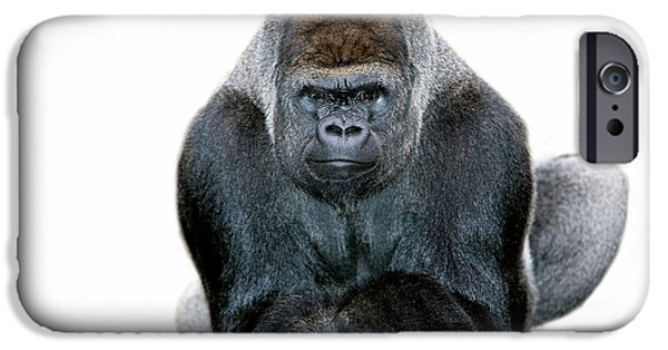 Cut-outs iPhone Cases - Eastern Lowland Gorilla iPhone Case by Gerard Lacz