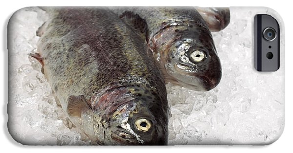 Cut-outs iPhone Cases - Fresh Rainbow Trout Salmo Gairdneri iPhone Case by Gerard Lacz