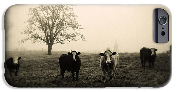 Agricultural iPhone Cases - Livestock iPhone Case by Les Cunliffe