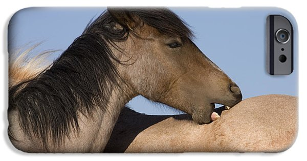 Bonding iPhone Cases - Mutual Grooming iPhone Case by Jean-Louis Klein & Marie-Luce Hubert