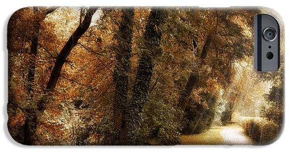 Country Lanes iPhone Cases - October Trail iPhone Case by Jessica Jenney