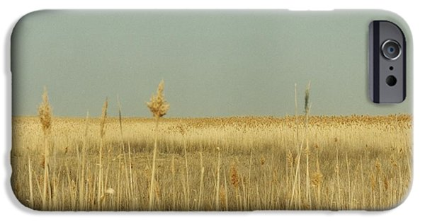 Nature Study iPhone Cases - #585 21 Plum Island Marsh Grass iPhone Case by Robin Lee Mccarthy Photography