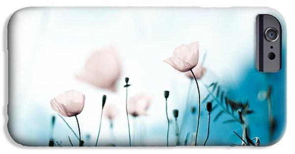 Flora iPhone Cases - Corn Poppy Flowers iPhone Case by Nailia Schwarz
