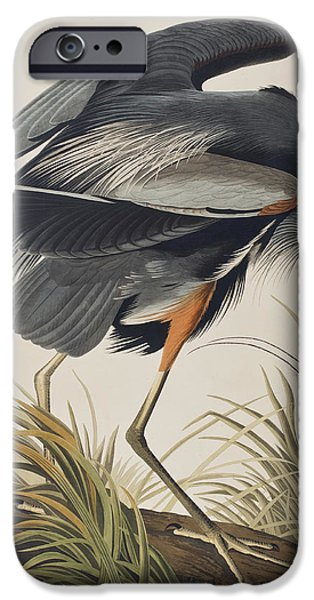 Heron Paintings iPhone Cases - Great Blue Heron iPhone Case by John James Audubon