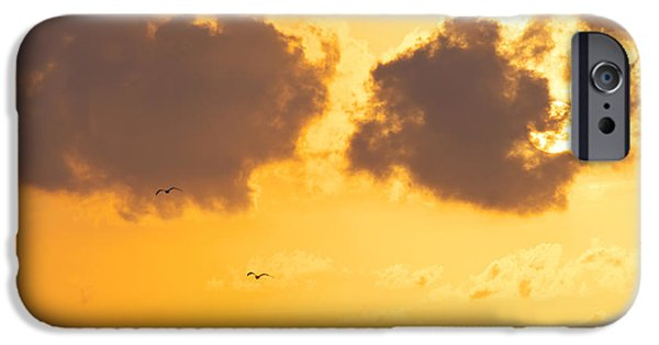 Flying Seagull iPhone Cases - Sunset iPhone Case by Angela Doelling AD DESIGN Photo and PhotoArt