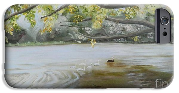 Swans... iPhone Cases - 6 Swans II iPhone Case by Gina Lemelin