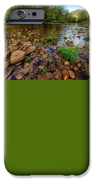 Trout Stream Landscape iPhone Cases - Williams River Spring iPhone Case by Thomas R Fletcher