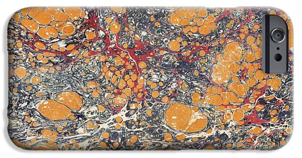 Nineteenth iPhone Cases - Decorative Endpaper From A Nineteenth iPhone Case by Ken Welsh
