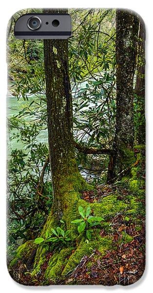 West Fork iPhone Cases - Back Fork of Elk River iPhone Case by Thomas R Fletcher