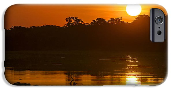 Mangrove Forest iPhone Cases - River in the Amazon Rainforest at dusk Peru iPhone Case by Eduardo Huelin