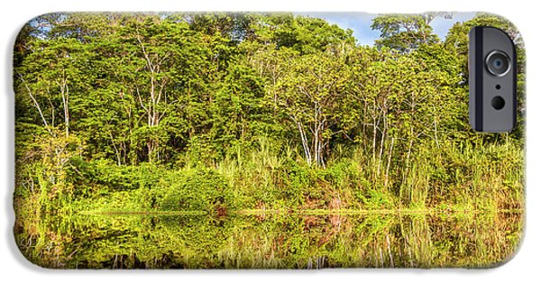 Mangrove Forest iPhone Cases - River in the Amazon Rainforest Peru iPhone Case by Eduardo Huelin