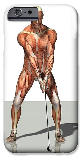 Male Muscles, Artwork iPhone Case by Friedrich Saurer