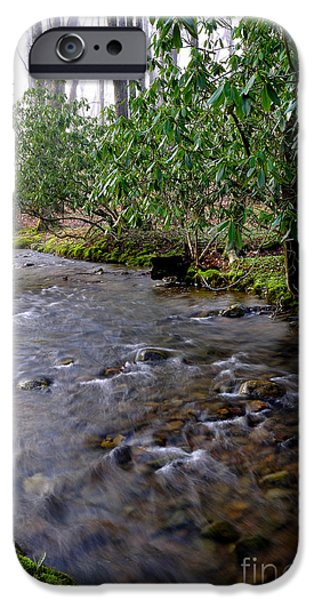 West Fork iPhone Cases - Middle Fork of Williams River iPhone Case by Thomas R Fletcher