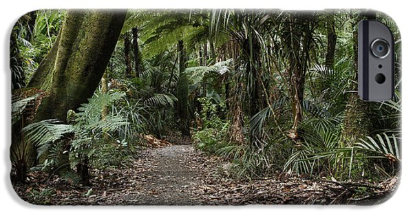 Jungle iPhone Cases - Walking trail iPhone Case by Les Cunliffe