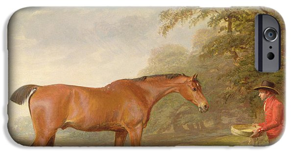 Horse iPhone Cases - A Bay Horse iPhone Case by George Garrard