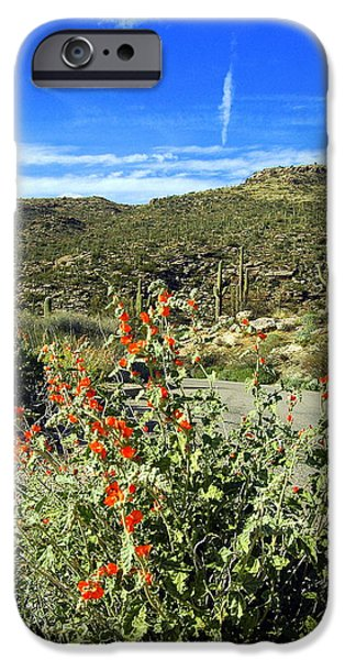Cactus Southwest Cactus Flower Orange Wildflowers Nature Arizona iPhone Cases - A Beautiful Stop on the Way up the Mountain iPhone Case by Teresa Stallings