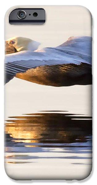 A Closer Look iPhone Case by Janet Fikar