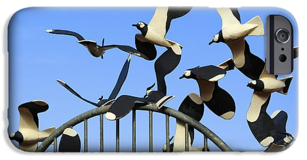 Deceit iPhone Cases - A deceit of Lapwings. iPhone Case by Stan Pritchard