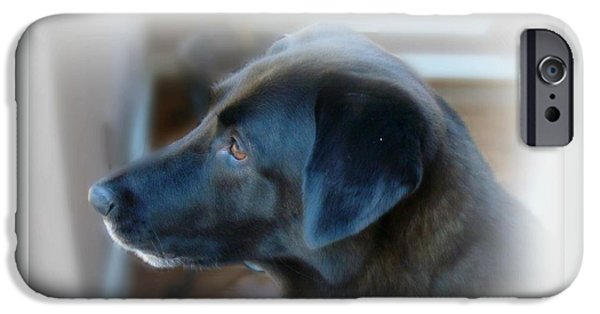 Black Dog iPhone Cases - A Dog Must Have A Secret Place iPhone Case by Kathy Bucari