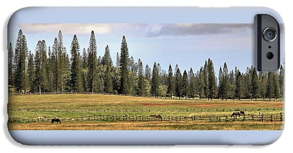 Horse iPhone Cases - A Lanai Ranch iPhone Case by DJ Florek