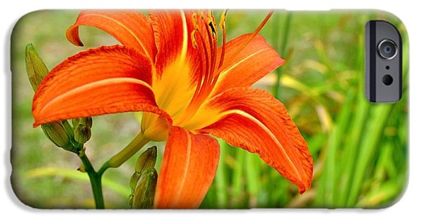 Plant iPhone Cases - A Lily For A Day iPhone Case by Deacon Scythe