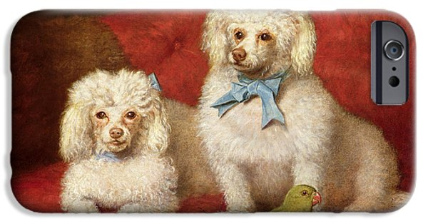 Working Dogs iPhone Cases - A Pair of Poodles iPhone Case by English School