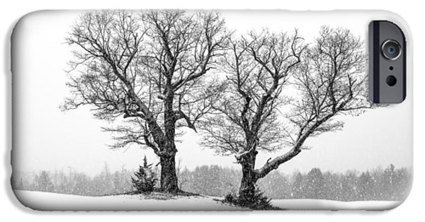 Winter Trees Photographs iPhone Cases - A Perfect Pair iPhone Case by Shared Perspectives  Photography