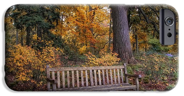Autumn Woods iPhone Cases - A Place to Rest iPhone Case by Jessica Jenney