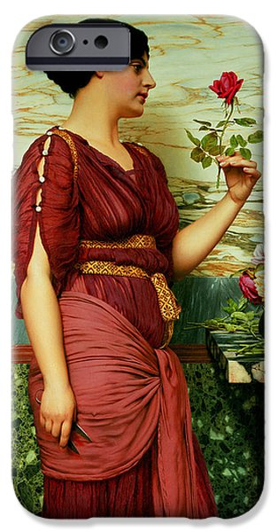 Daydream iPhone Cases - A Red Rose   iPhone Case by John William Godward