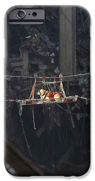 A Rescue Dog Is Transported iPhone Case by Stocktrek Images