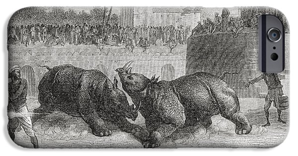 Animal Drawings iPhone Cases - A Rhinoceros Fight In Baroda, India In iPhone Case by Ken Welsh