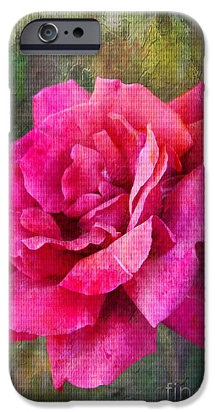 Flora iPhone Cases - A Rose Canvas iPhone Case by Clare Bevan
