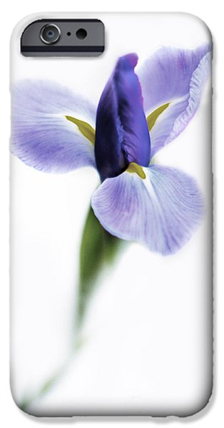 Iris iPhone Cases - A Sign iPhone Case by Rebecca Cozart