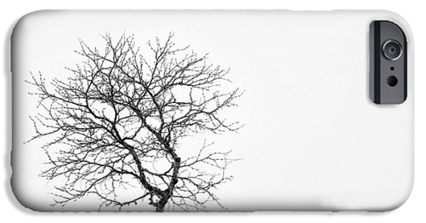 Norway iPhone Cases - A Simple Tree iPhone Case by Dave Bowman