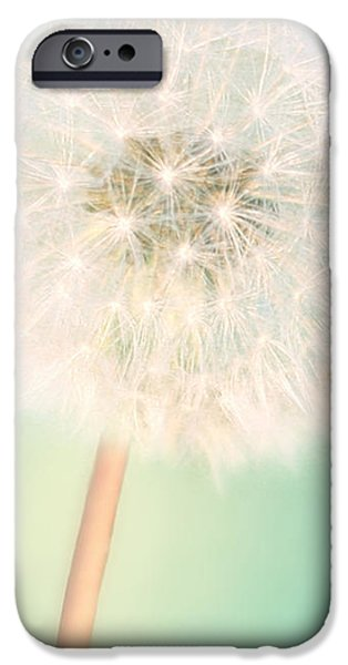 Large Print iPhone Cases - A Single Wish II iPhone Case by Amy Tyler