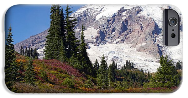 Meadow Photographs iPhone Cases - A Splash of Fall Colors iPhone Case by Emerita Wheeling