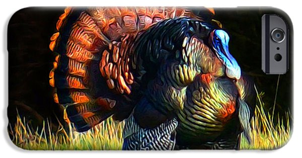 Eastern Wild Turkey iPhone Cases - A Spring Show Off iPhone Case by Mike  Quesinberry