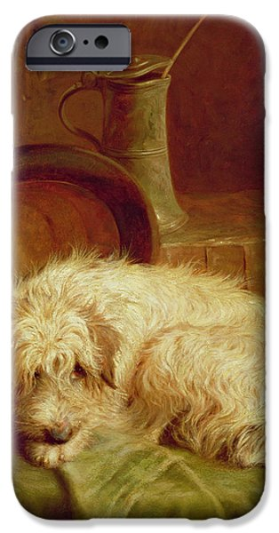Terrier iPhone Cases - A Terrier iPhone Case by John Fitz Marshall