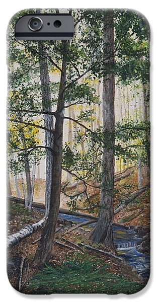 A walk in the Woods iPhone Case by Vicky Path