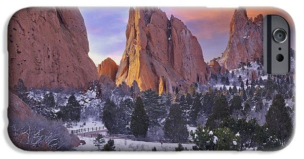Garden Scene iPhone Cases - A Winter Morning iPhone Case by Tim Reaves