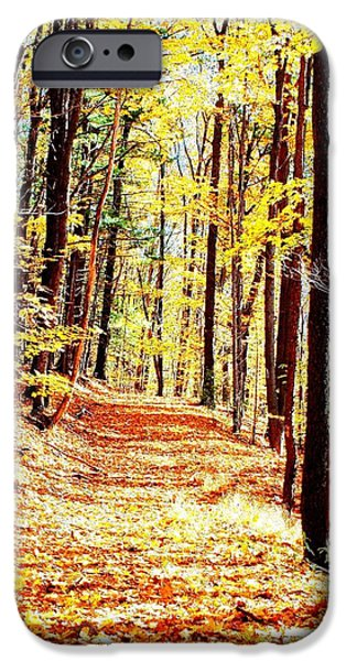 Upstate New York iPhone Cases - A Yellow Wood iPhone Case by Joshua House