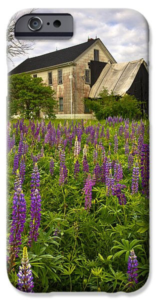 Old Maine Houses iPhone Cases - Abandoned House iPhone Case by Benjamin Williamson