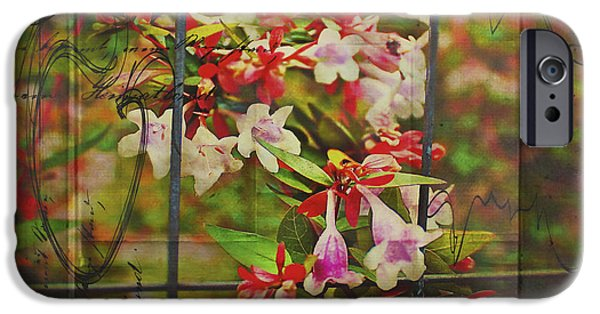 Botanical Jewelry iPhone Cases - Abelia Coming Through iPhone Case by Bellesouth Studio