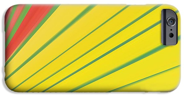 Graphic Design iPhone Cases - Abstract 4 iPhone Case by Sheela Ajith