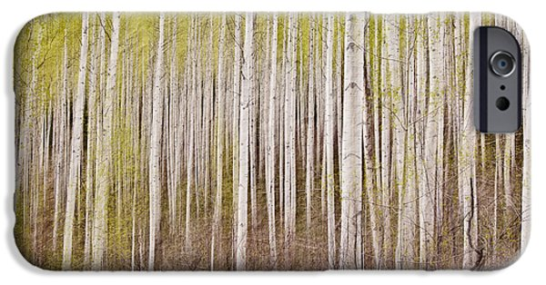Nature Abstracts iPhone Cases - Abstract Aspens iPhone Case by Scott Pellegrin