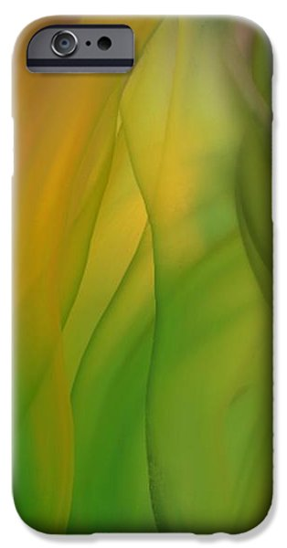 Gina Lee Manley iPhone Cases - Abstract Bouquet iPhone Case by Gina Lee Manley