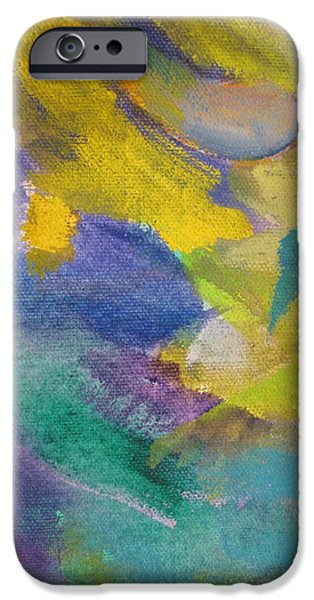 Close Up Floral iPhone Cases - Abstract close up 13 iPhone Case by Anita Burgermeister