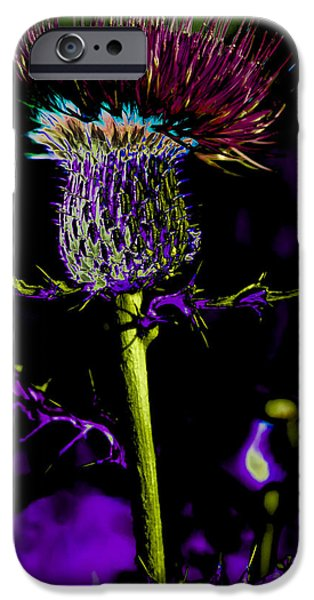 Abstract Digital Photographs iPhone Cases - Abstract Spear Thistle iPhone Case by Julie Wooden