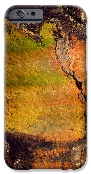 Shape iPhone Cases - Abstract Walls iPhone Case by Az Jackson